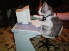 cat-reads